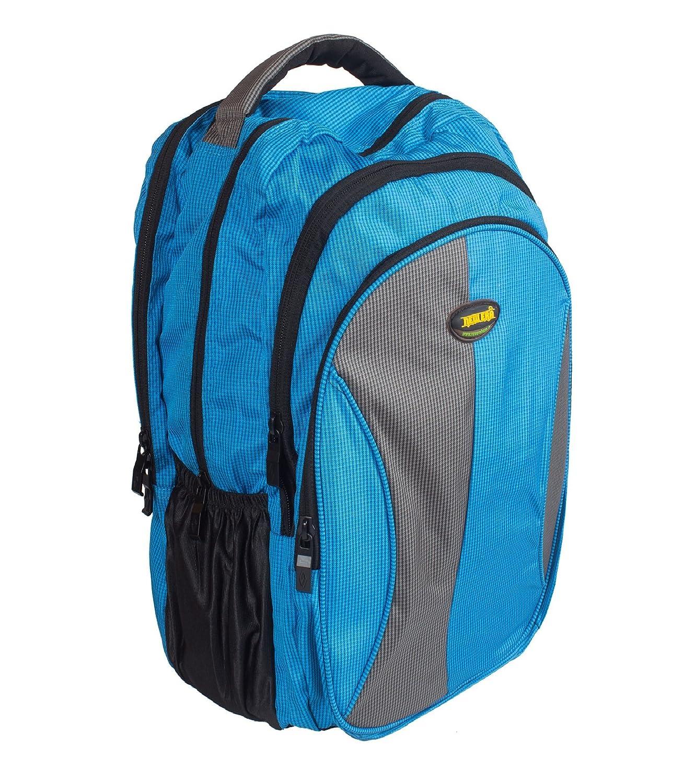 New-Era Polyester 40 Ltr Sky Blue-Grey School Bag  school bags for boys 52cf8682f4282
