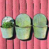 The Farmer's Market Feed Bin Wall Planters, Set of 3, Galvanized Metal, Corrugated, Rolled Edges, Distressed Vintage Finish, 13 1/2, 12 1/4 and 11 Inches High, By Whole House Worlds