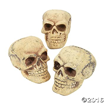 halloween skeleton skulls by spookville - Halloween Skulls Pictures