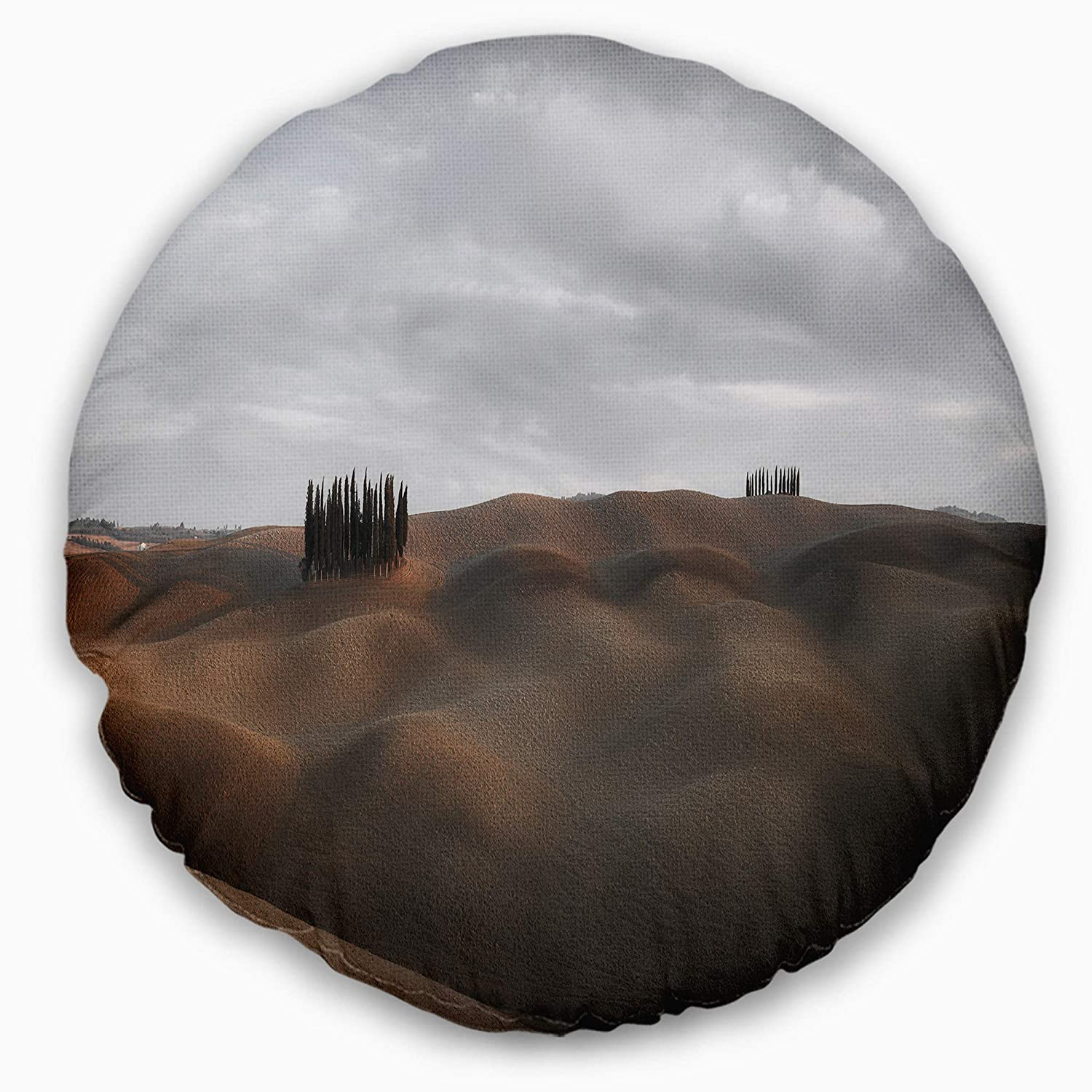 Sofa Throw Pillow 20 Designart CU11523-20-20-C Cypress Grove at The Field Panorama Landscape Printed Round Cushion Cover for Living Room Insert Side