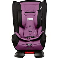 InfaSecure Grandeur Astra Convertible Car Seat for 0 to 8 Years, Purple