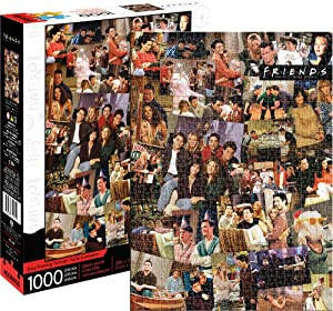 Aquarius Friends Collage 1000 Piece Jigsaw Puzzle, Multicolor