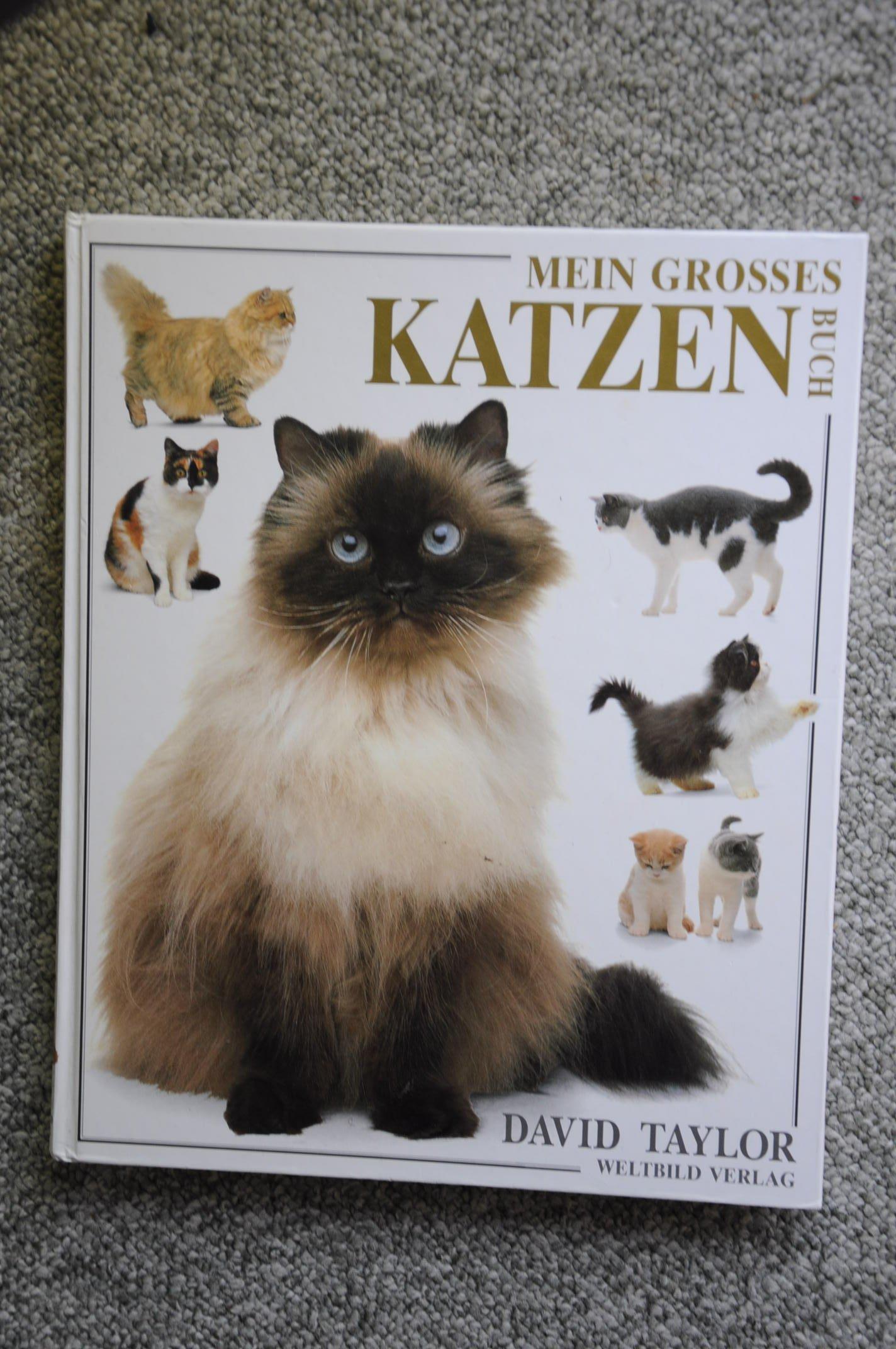 Mein großes Katzenbuch