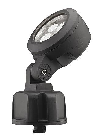 Lithonia Lighting OLBS 8 50K DDB M6 Outdoor LED Bullet 8 Inch 5000K  Spotlight,