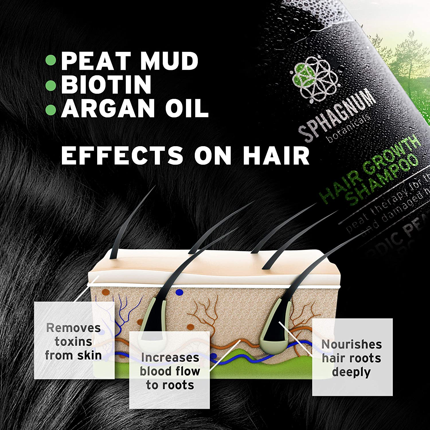 Hair Growth Shampoo and Conditioner - Natural Argan Oil with Peat Mud for Effective Hair Loss Treatment. : Beauty