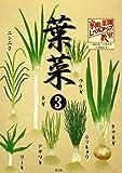 家庭菜園レベルアップ教室 葉菜〈3〉