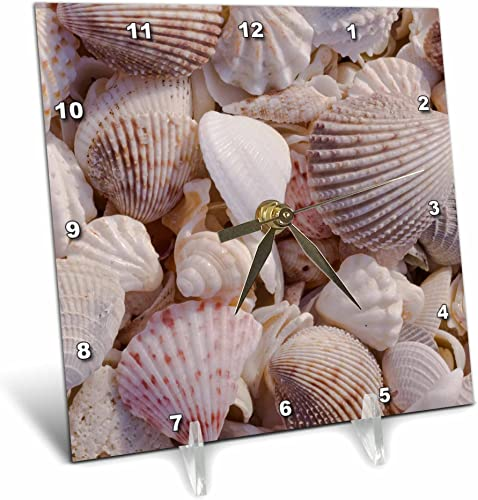 3dRose dc_94909_1 USA, FL, Sanibel, Seashells Washed Up on Beach-US45 RTI0045-Rob Tilley-Desk Clock, 6 by 6-Inch