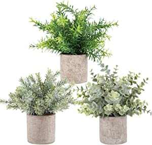 3 Pack Mini Potted Artificial Eucalyptus Plants Faux Green Rosemary Plasic Plant for Home Office Desk Room Decoration