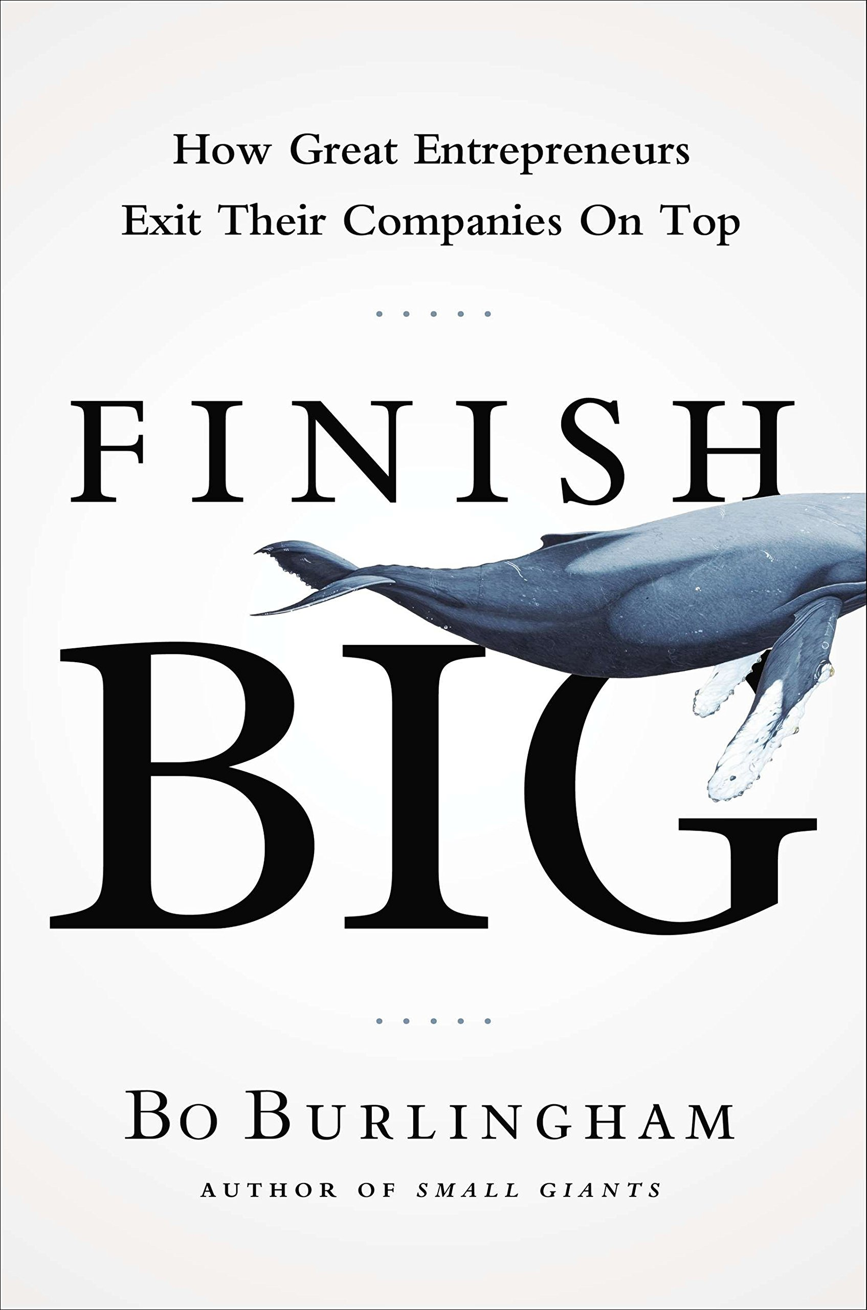Finish Big: How Great Entrepreneurs Exit Their Companies on Top by Portfolio (Image #1)