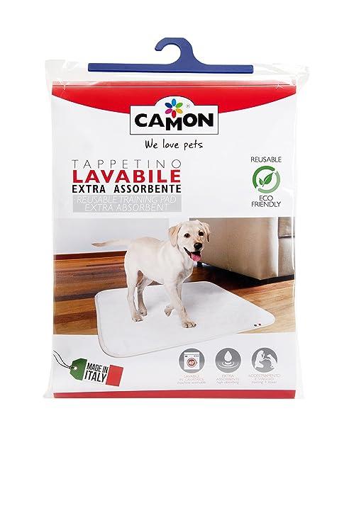 Alfombrilla lavable extra absorbente para perros, medidas 70 x 60 cm.