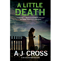 Little Death, A: A forensic cold case mystery (A Kate Hanson Mystery Book 3)