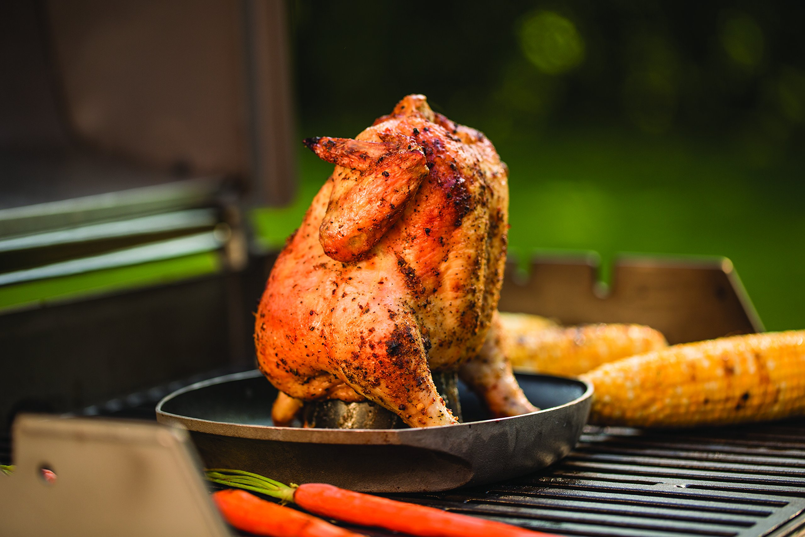 Weber 6731 Style Poultry Infusion Roaster