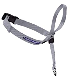 PetSafe Gentle Leader Head Collar with Training DVD, MEDIUM 25-60 LBS., SILVER