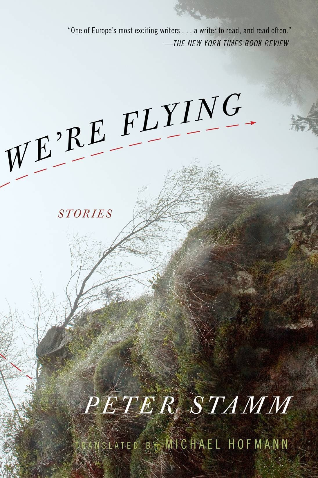 We're Flying: Peter Stamm, Michael Hofmann: 9781590513248: Amazon.com: Books