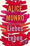 Liebes Leben: 14 Erzählungen (Fischer Taschenbibliothek)