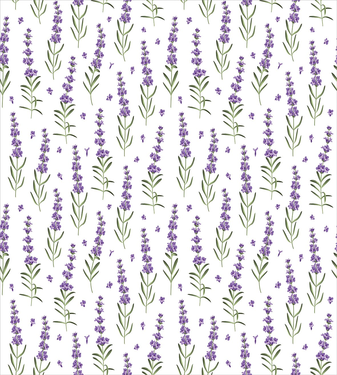 Decorative 3 Piece Bedding Set with 2 Pillow Shams Nature Pattern with Delicate Lavender Twigs Fresh Organic Plants Herb Lavender Queen Size Duvet Cover Set by Ambesonne Violet Sage Green White