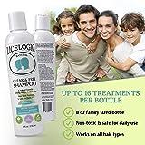 LiceLogic Head Lice Shampoo   Non Toxic Lice