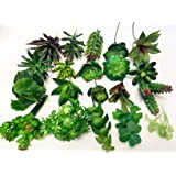 """Assorted Quality Long Large stems of Artificial Succulents - 20 stems (4.5-6""""/stem) -Perfect for all DIY projects"""