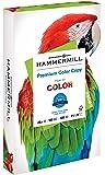 hammermill 纸,颜色 COPY 数码 POLY 包巾,12.7kilogram ,8.5x 11,字母,100明亮300张/1包, (102700r) 美国制造