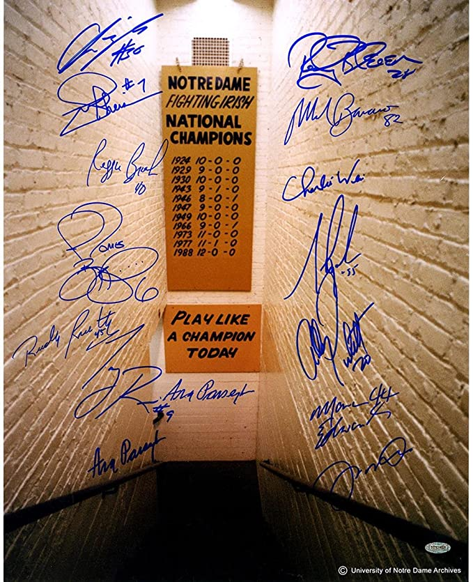Buy Ncaa Notre Dame Fighting Irish Greats 15 Signature Locker Room Tunnel Online At Low Prices In India Amazon In