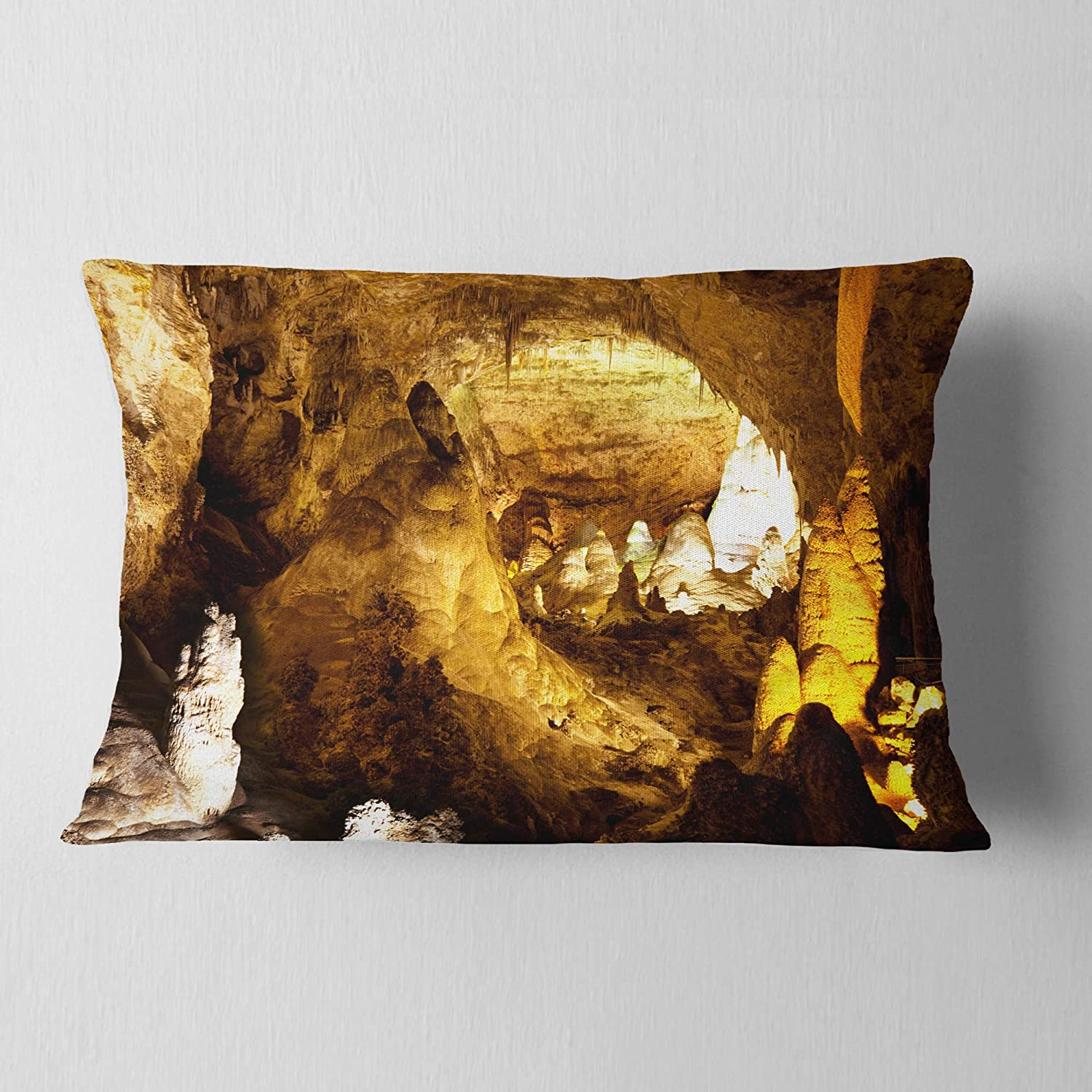Sofa Throw Pillow 12 in Designart CU12588-12-20 Carlsbad Caverns National Park Landscape Printed Lumbar Cushion Cover for Living Room x 20 in in