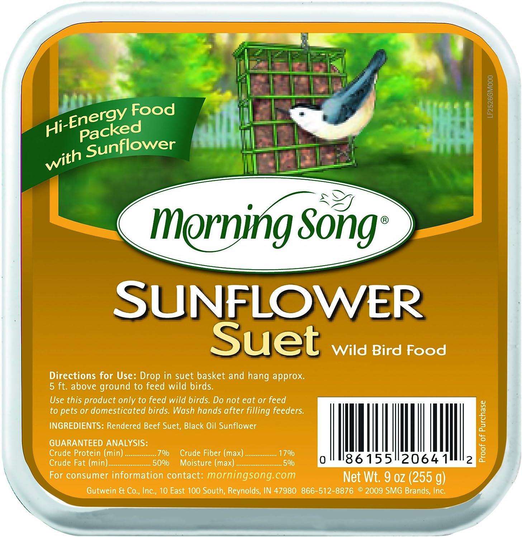 Morning Song 11454 Sunflower Suet Wild Bird Food, 9-Ounce