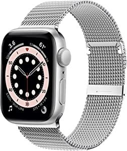 Ewsprou Magnetic Band Compatible with Apple Watch 38mm 40mm 42mm 44mm, Stainless Steel Mesh Strap Replacement for iWatch SE iWatch Series 6/5/4/3/2/1 (Silver, 38mm 40mm)