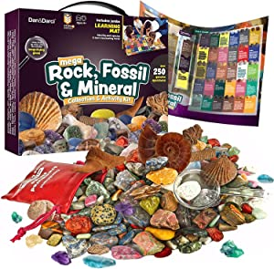 Rock, Fossil & Mineral Collection & Activity Kit. Includes 250+ Real Gemstones, Crystals Specimens & Jumbo Learning Mat - Bulk Rough Rocks, Polished Gem Stones, Genuine Fossils - Science Gift for Kids