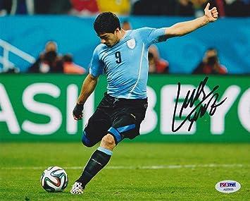 Luis Suarez Autographed Photo - 8x10 Uruguay Blue Jersey Kicking World Cup  - PSA DNA d5cf35695