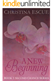 A New Beginning (The Second Chance Book 1)