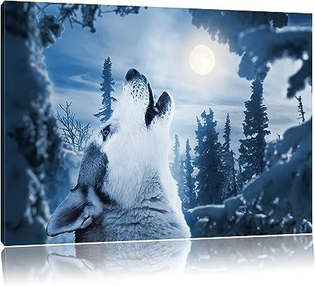 Bild auf Leinwand Mondschein 1p XXL Poster Leinwandbild Wandbild