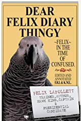 Dear Felix Diary Thingy: Felix in the Time of Confused Kindle Edition
