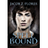 Spell Bound (The Warlock Brothers of Havenbridge Book 1)
