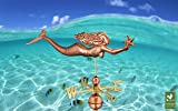 Good Directions Mermaid with Starfish