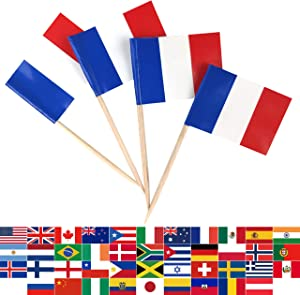 JBCD 100 Pcs France Flag Toothpicks French Flags Cupcake Toppers Decorations, Cocktail Toothpick Flag Cake Topper Picks Mini Small Flag Cupcake Pick Sticks