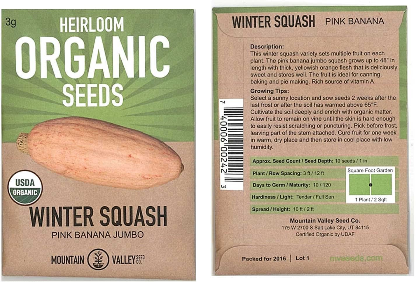 Pink Banana Jumbo Winter Squash Garden Seeds - 3 g Packet - Organic, Non-GMO, Heirloom - Vegetable Gardening Seed