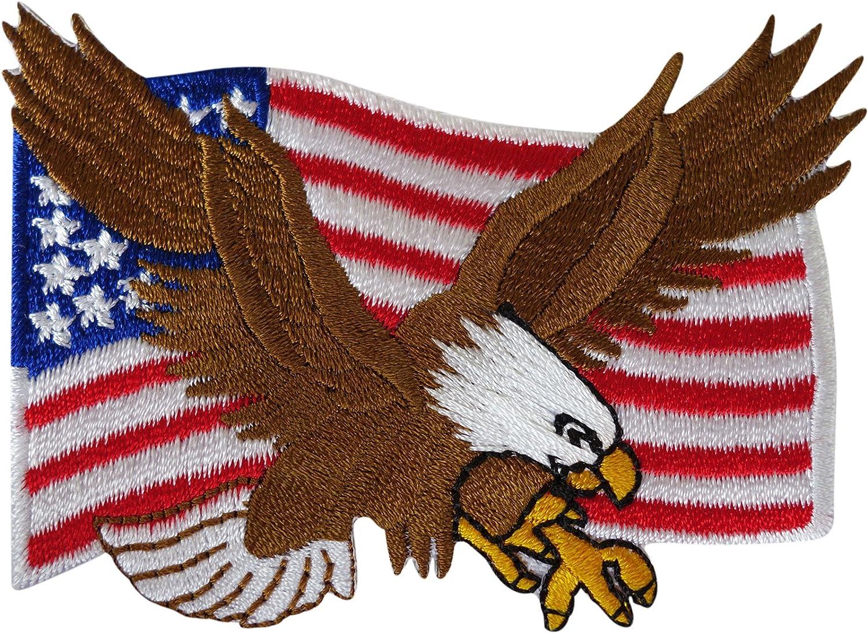 Parche de bandera de Estados Unidos para coser o planchar con diseño de águila de los Estados Unidos de América: Amazon.es: Hogar