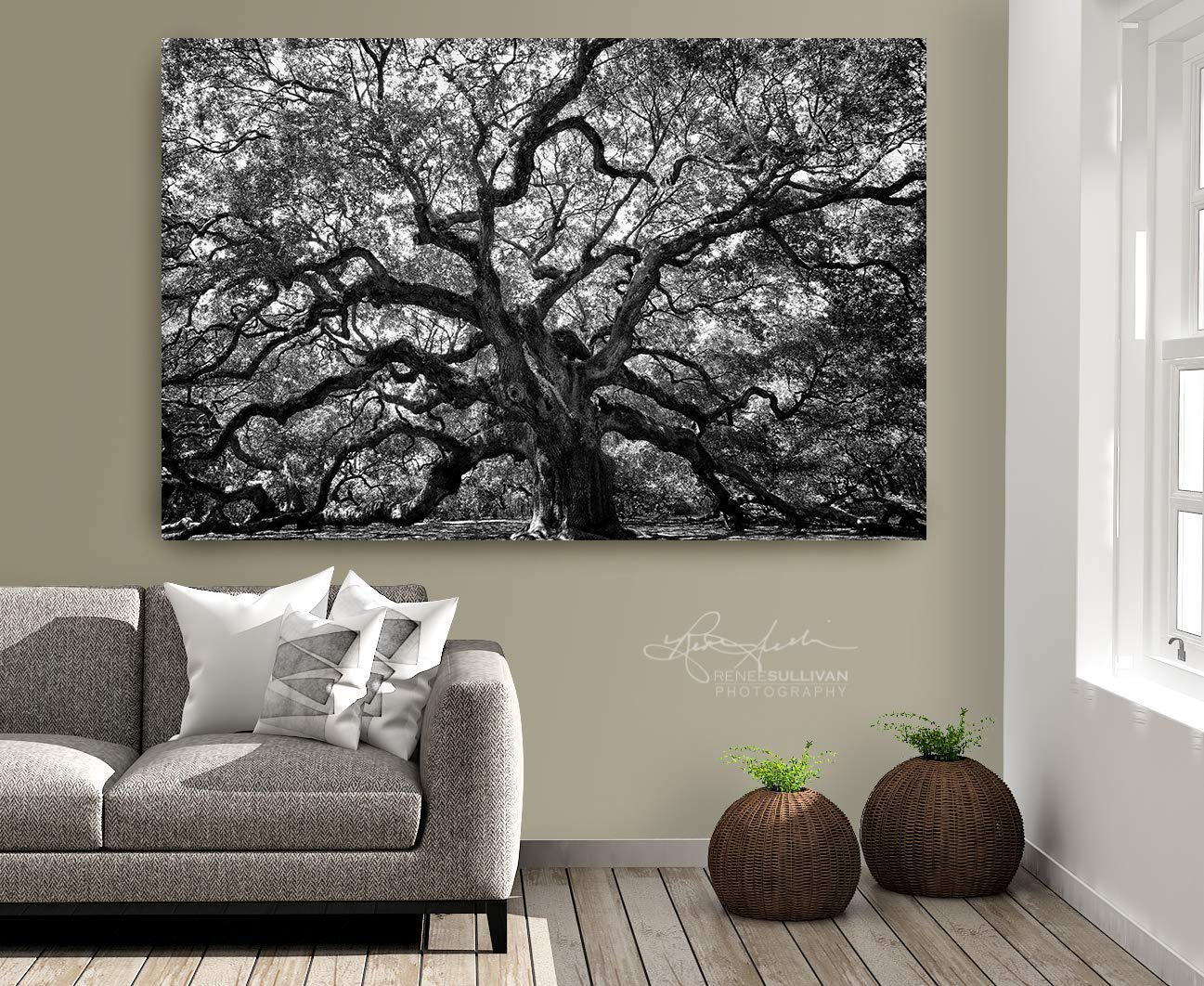 7faa1e218f Amazon.com: Angel Oak Tree, Charleston SC, CANVAS or METAL Ready-to-Hang,  Black & White Fine Art Photography, Small to Extra Large Wall Art, 7x5 to  72x48 ...