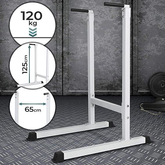Physionics Estación Dip de Musculación - Empuñaduras Acolchadas, para Tríceps/Pectorales/Hombros/Espalda/Abdominales/Piernas (Máx. 120 kg) - Barras Paralelas: Amazon.es: Deportes y aire libre