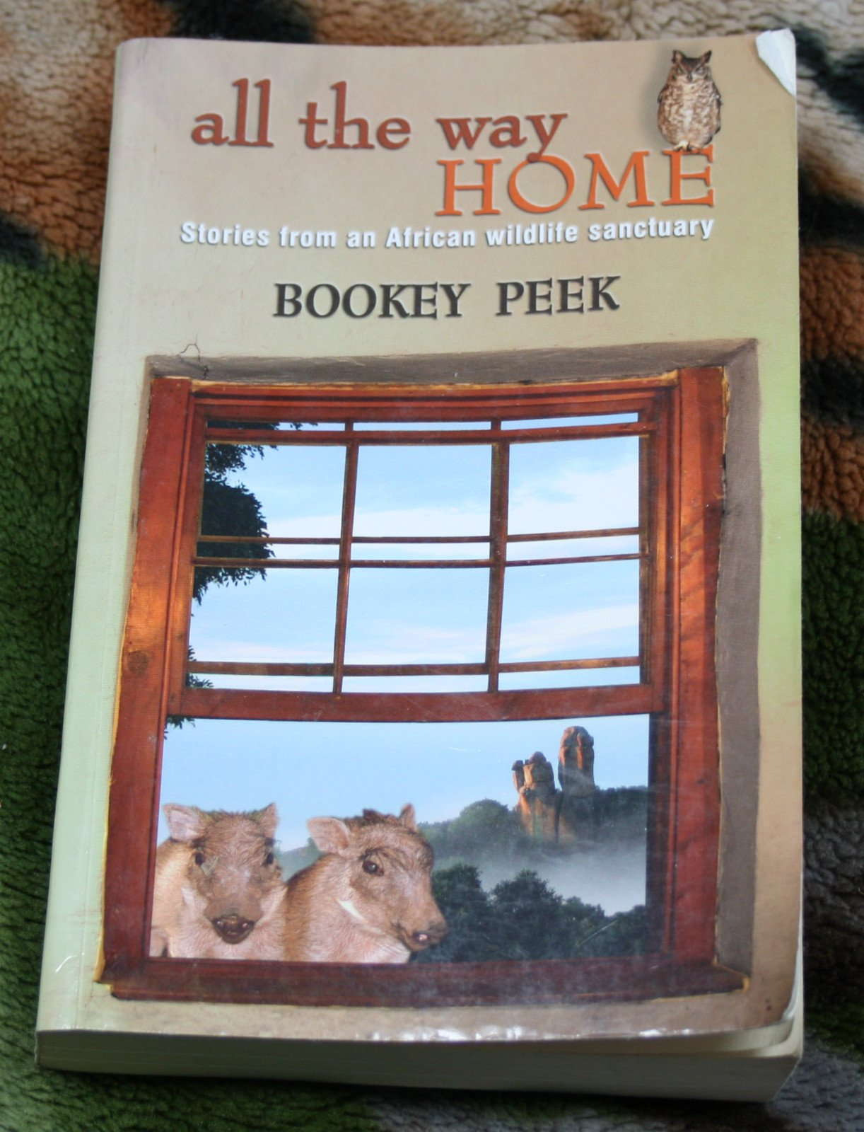 Download All the Way Home: Stories from an African Wildlife Sanctuary pdf epub