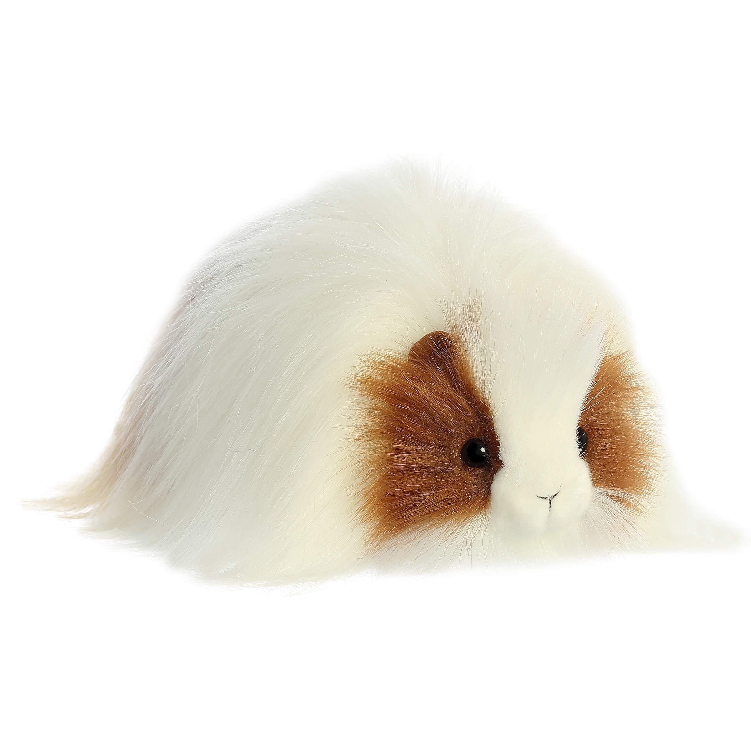 "Aurora - Luxe Boutique - 10"" Quincy Guinea Pig"