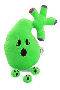 Attatoy Gallbladder Plush, Body Organ Stuffed Toy Complete with Gallstones