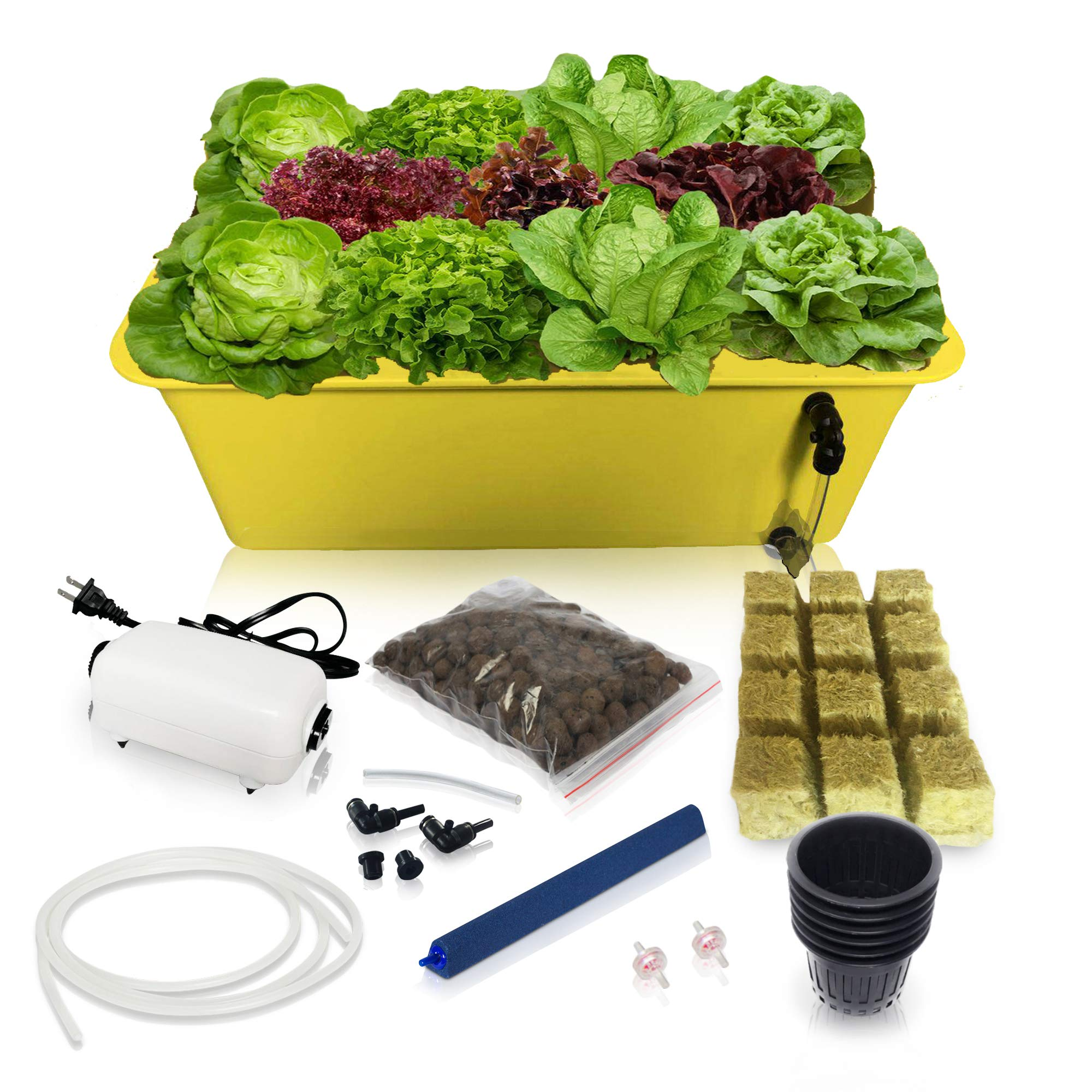 SavvyGrow DWC Hydroponics Growing System-Kit - Medium Size w/Airstone, 11 Plant Sites (Holes) Bucket, Air Pump, Rockwool - Best Indoor Herb Garden for Lettuce, Mint, Parsley - Grow Fast at Home by SavvyGrow
