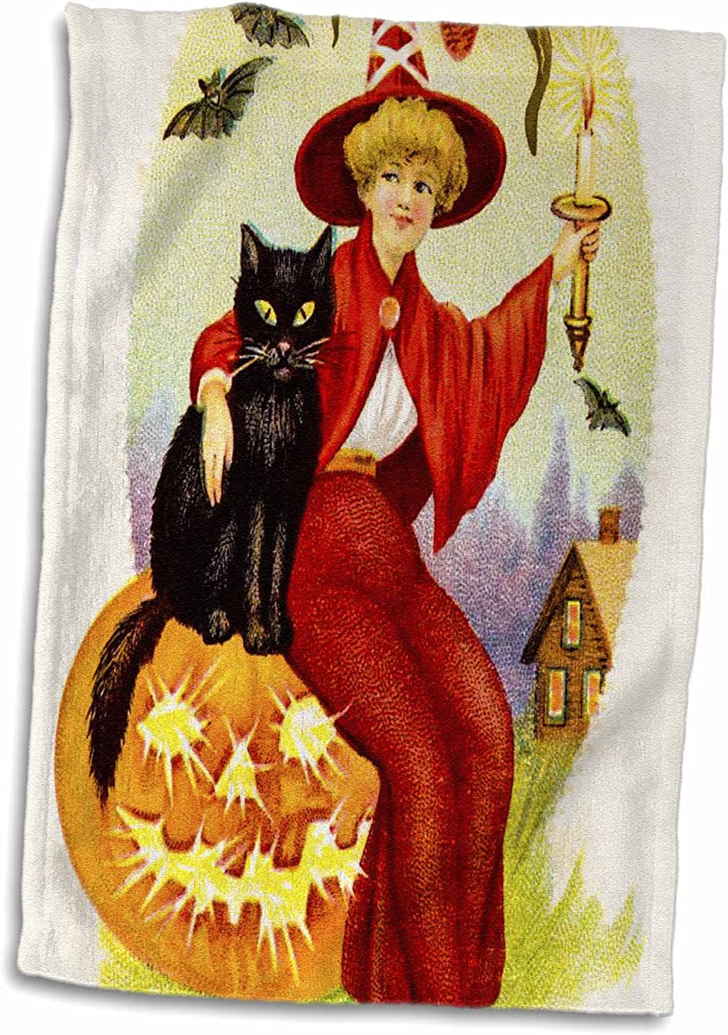 Halloween Witch Kitchen Towels Page Two