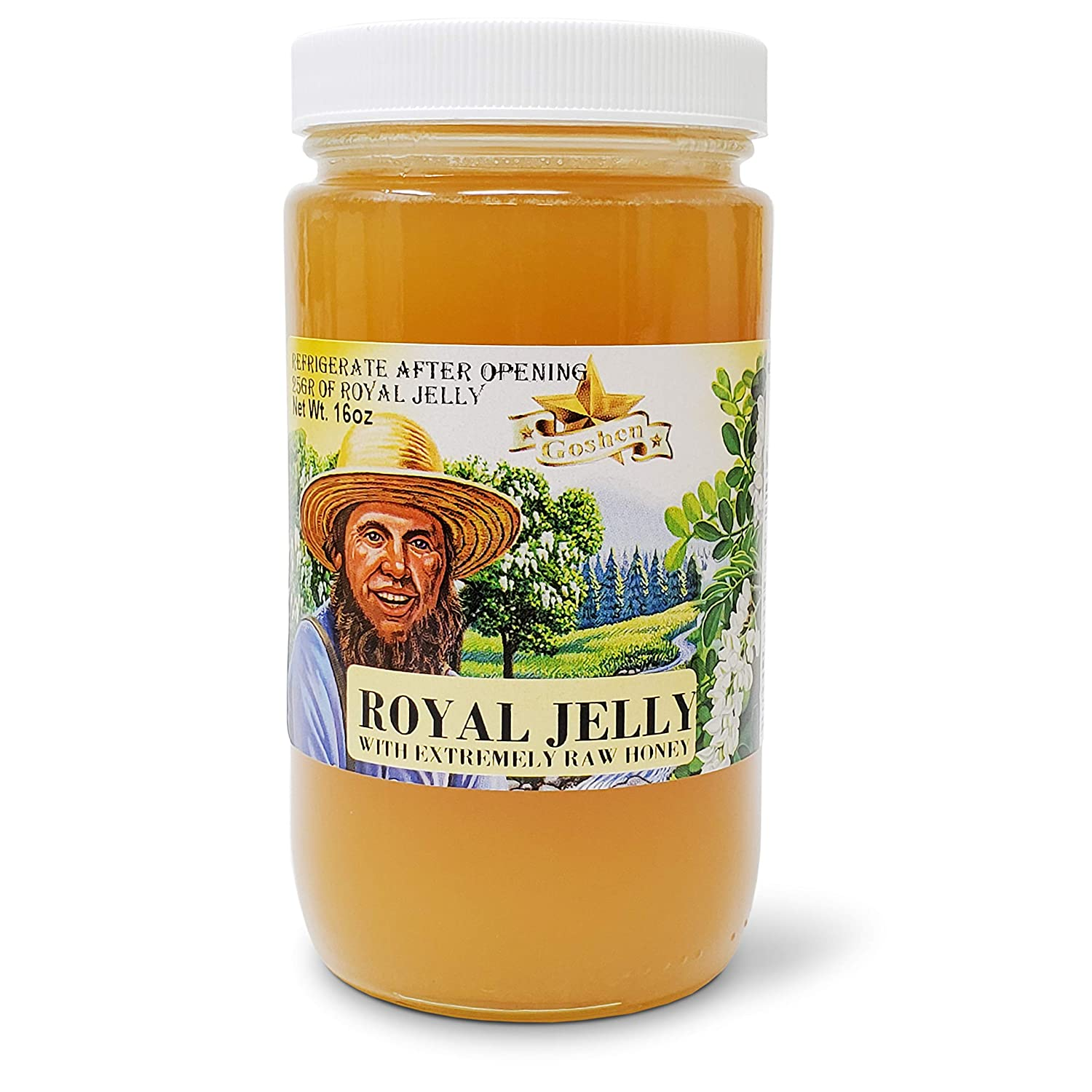 Goshen Honey Amish Extremely Raw ROYAL JELLY Honey 100% Organically Pure Fresh Natural Domestic Honey With Life Enzymes Health Benefits | Unfiltered Unprocessed Unheated | 1 Lb Jar | 16 Oz Glass Jar