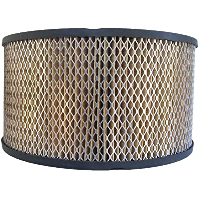Luber-finer AF599 Heavy Duty Air Filter: Automotive