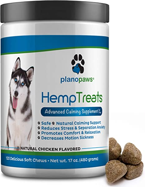 CBD, Hemp Pet Treat Dangers & Overdose Treatments