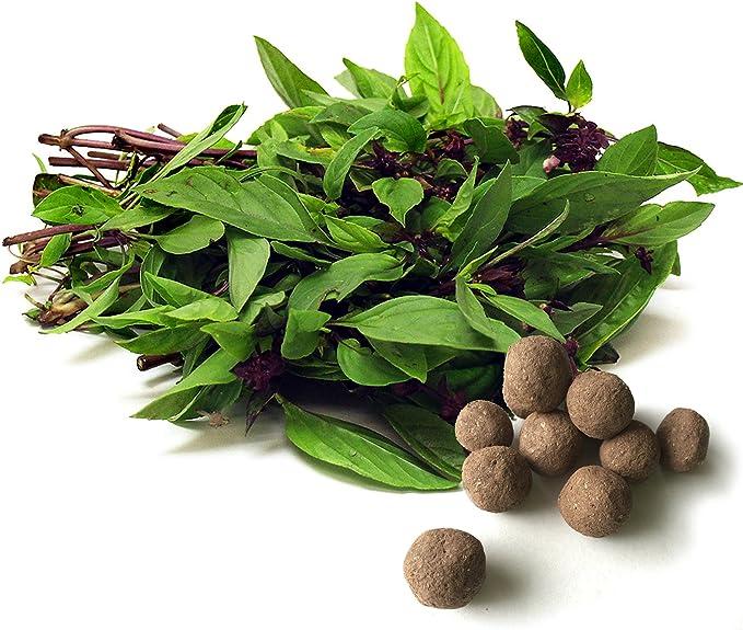 Amazon.com: Thai – Bolas de semillas de albahaca hierbas y ...