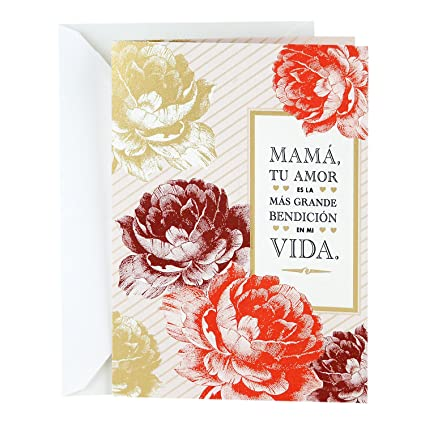 Amazon hallmark vida spanish religious mothers day greeting hallmark vida spanish religious mothers day greeting card removable mom bookmark m4hsunfo