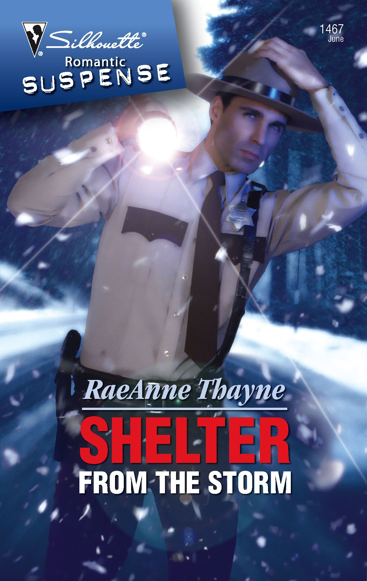 Download Shelter From The Storm (Silhouette Intimate Moments) ebook